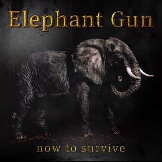Elephant-Gun